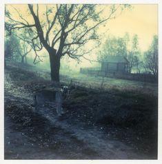 Polaroid by Andrei Tarkovsky Lot 19 - Polaroid 3