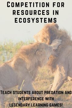 Predation and interference: resource competition lessons with eight curricula games on competition for resources in ecosystems. Sign up for a free account and join Legends of Learning superhero teacher community.
