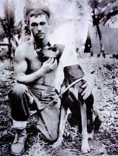 Pepe, wounded Doberman of WW II.