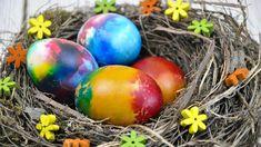 Oua curcubeu vopsite de Paști, metoda rapida si aspectuoasa 🏠 Casuta Laurei