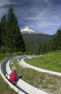 Mt. Hood Skibowl's Summer Adventure Park has the Pacific Northwest's only 1/2-mile dual alpine slide! http://www.mthoodterritory.com/things-to-do/outdoor-recreation/biking/mt-hood-adventure-park-at-skibowl-alpine-slide