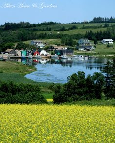 French River, Prince Edward Island - I really want to go here. Beautiful Islands, Beautiful Places, Amazing Places, Places To Travel, Places To See, Travel Destinations, Ottawa, Discover Canada, East Coast Travel