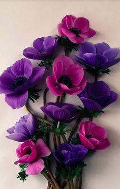 Rare Flowers, Clay Flowers, Amazing Flowers, Colorful Flowers, Purple Flowers, Beautiful Flowers, Flower Frame, My Flower, Plant Fungus