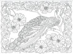 3d coloring pages for adults of an eagle resting Crayola magic 3d coloring book amazing animals