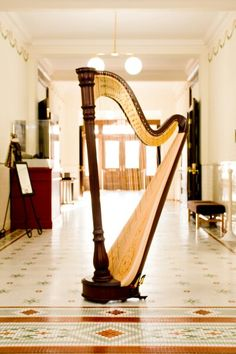 A full size concert harp commands attention; it's not an instrument you can easily ignore. The harp is a beautiful instrument which will add sophistication andvisual impactat any wedding ceremony, cocktail hour, reception, or dinner party. A harp is a very elegant instrument with a full and romantic sound. It's also a lovely instrument to look at, adding visual impact to the experience of live music.
