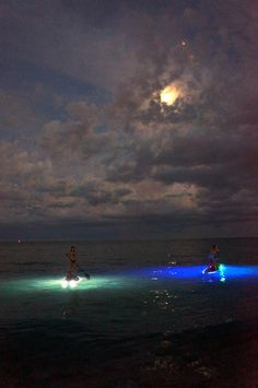 Moonlight paddle boarding in the Keys. I wanna do this!!