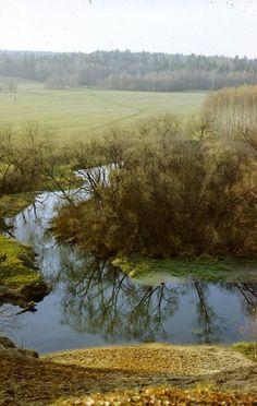 conceptual art and nature, design squish blog