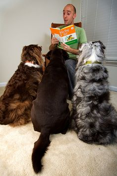 : )  Go, Dog, GO!  gather 'round kids, it's story time! by aye_shamus, via Flickr.           Confession: I read aloud to Keats.