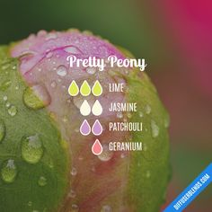 Pretty Peony - Essential Oil Diffuser Blend