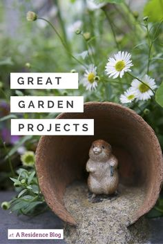 15 great garden projects, make a scarecrow, make the garden bird friendly, make a miniature garden, plant a wildflower patch, plant sunflowers, make a herb garden, weed, prune, clean up garden furniture, upcycle metal chairs, pot houseplants, lots of lovely inspiration!