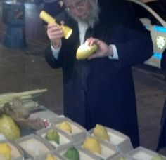 R' Yossel mermalstein Checking an Esrog