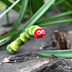 Making a DIY Very Hungry Caterpillar puppet for pretend play is an easy craft kid's can make. It only takes 5 minutes start to finish to make one of these little cuties inspired by popular children's book. Older children will be able to make one of these on their own, while preschoolers like mine will need some assistance putting one together. Use for imaginative dramatic play, in story baskets, and as an addition to a butterfly nature study homeschool unit. These make great birthday party…