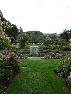 Kelleher Rose Garden in the Back Bay Fens. Part of Olmsted's Emerald Necklace. #landarch #Boston