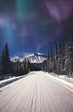 ✮ Northern Lights Over A Snowy Road.one of my dreams to see the Northern Lights. Aurora Borealis, Beautiful World, Beautiful Places, Beautiful Sky, Winter Szenen, Winter Road, Winter Months, Winter Beauty, To Infinity And Beyond