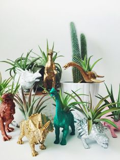 Customize Your Own Dinosaur Planter with Air Plant; Home Decor; Customize Your Own Dinosaur Planter with Air Plant; Home Decor; D by TwoTreesBotanicals on Etsy. Home Decor Accessories, Decorative Accessories, Decorative Items, Dinosaur Types, Dinosaur Plant, Suculentas Diy, Plantas Indoor, Homemade Home Decor, Handmade Home Decor