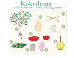 Make your own moss world: Kokedama Tutorial | Miss Moussetache aka Mimimou
