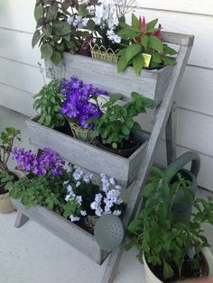 Upcycled ladder with herbs and flowers! #reuse #recycle