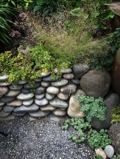 1742 best Gardens images on Pinterest   Diy landscaping ideas     Seven fresh and elegant private gardens on Portland s westside  open with  the Association of Northwest Landscape Designers