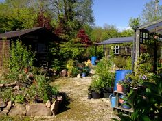 Bealtaine Cottage Permaculture Gardens