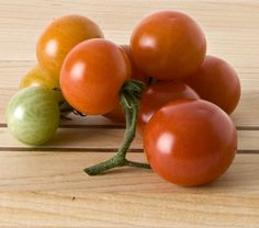 Tomato Husky Cherry Red...a must for the grandsons who love to pick and eat!