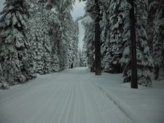 Yosemite Wilderness after a snowstorm [OC] [4320x3240]