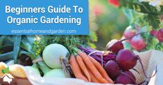 Organic gardening is becoming increasingly popular as more people look to eliminate chemical products from what they grow in the garden. While using chemical-based pesticides and fertilizers may make garden maintenance easier, there are drawbacks to using such substances.