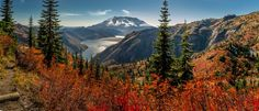 Hi-Lo Hikes for Fall Colors Fall is arguably one of the best seasons for hiking in Washington state. Forget the blazing heat and bugs of summer; your backpack now holds an extra wool sweater or fleece and a thermos of hot cocoa.