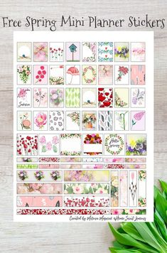 Free Printable Spring Planner Stickers for Mini Planners pastel themed accents, dividers and edges with flowers, umbrellas for April showers, poppies etc Happy Planner Kit, Free Planner, Planner Ideas, Printable Planner Stickers, Free Printables, Printable Tags, Summer Planner, Bullet Journal, Journal Stickers
