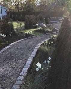Morgonstund har guld i mun eller hur man nu säger. Ljuvligt är det i alla fall ingen vind och i rabatterna blommar mängder med narcisser. Lovely Narcissus blooming in my garden and the morninglight is absolutly amazing. #länsmansgårdendesign #lansmansgarden #vårpålänsmansgården2018 #narcisser #påskliljor #mounthood #narcissusgarden #mygarden #minträdgård #garden #trädgård #have #hage #garten #dancingmoonlight #grusgång #path