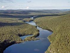 Lemmenjoen kansallispuisto. Lemmenjoki National Park.
