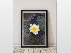 Art for Sale, Water Lily Print, Flower Art, Digital Print, DIY Wall Decor, French Wall Art, Fine Art Photography, Botanical Native Print, Bedroom Decor