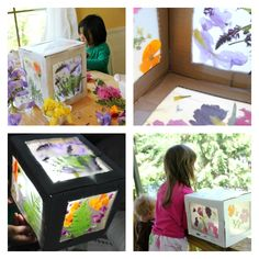 A 3D Nature Suncatcher for Kids
