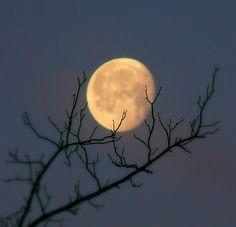 Bright and beautiful moon.