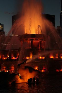 Buckingham Fountain - Chicago, Illinois few hours and this girls arrival goodbye ct hello chicagoooo!!!!!!!!