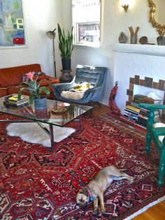 colorful eclectic living room. mix of modern, rustic and vintage. glass and metal coffee table, persian rug, plants, cute puppy. www.ninoshea.com www.etsy.com/shop/ladytulipvintage