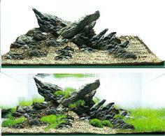 Project C Cool Fish Tanks, Tropical Fish Tanks, Planted Aquarium, Aquarium Fish, Aquarium Landscape, Aquarium Stand, Moss Plant, Aquarium Design, Tanked Aquariums
