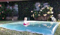 Obří vodní polštář na zahradu za 300 Kč
