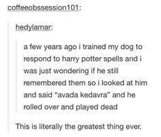 dog, funny, harry potter, text post, tumblr - image #2423789 by ... #DogFunny