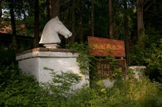 Abandoned Amusement Parks in Florida | Camelot Theme Park can be found at the end of Park Hall Road at the ...