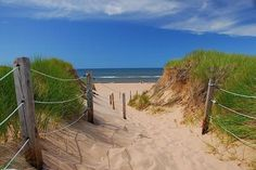"""Prince Edward Island. I could live there.  """"Walking in sand tightens your calves,   Do my calves look tighter?"""" asked Lorraine."""