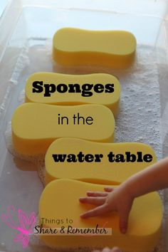 Preschool Water Table Ideas -Sponges in the Water Table Sponges in the water table. An affordable way to mix things up at the water table! View early education resources at ~Shari at TFC Sensory Tubs, Sensory Activities, Sensory Play, Preschool Activities, Sensory Diet, Summer Activities, Children Activities, Indoor Activities, Family Activities