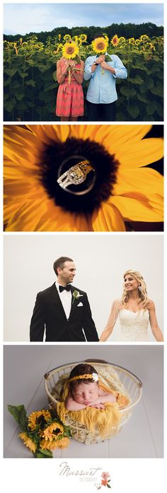 Photographs of engagement, wedding and newborn with sunflower theme | Photos by Massart Photography of Warwick, Rhode Island | www.massartphotography.com; info@massartphotography.com