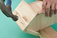 Building a wooden birdhouse