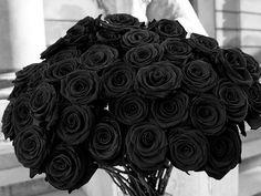I suppose I shouldn't find black roses gorgeous but I kind of do...I guess I'm creepy after all!