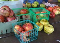 The pic is really about Heirloom Apple Varieties, but I haven't seen those fruit baskets in years!