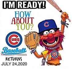 Chicago Cubs Pictures, Go Cubs Go, Fun Group, Cubs Fan, Mlb Teams, Cubbies, Champs, Cow, Baseball