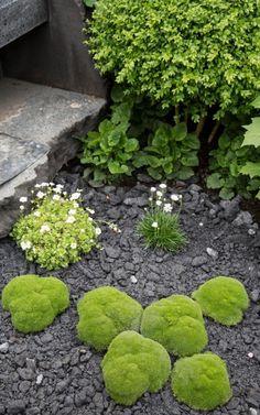 Linklaters Garden for Maggie's Show Garden