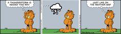 Garfield Comic Strip, May 26, 2015 on GoComics.com