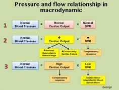 Shock chart-I Every critically ill pts have their own hemodynamic profile and response to treatment based on their characteristic and disease. Use combination of all hemodynamic monitoring available [1.clinical; urine output, consciousness. 2. Macrodynamic; Pressure (MAP, CVP), Flow (Cardiac output, GEDVI, CFI, SVRI, EVLWI) 3. Microdynamic and Tissue Oxygenation; Lactate, CO2 gap, ScvO2) to make a best decision of treatment. Nursing Pins, Nursing Care, Nursing Notes, Med Surg Nursing, Cardiac Nursing, Np School, Critical Care Nursing, Respiratory Therapy, Human Anatomy And Physiology