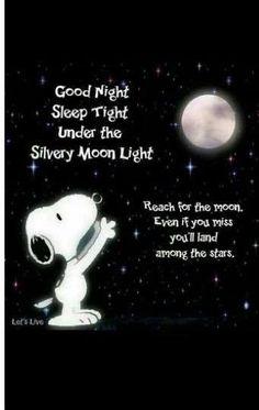 Peanuts Cartoon, Peanuts Snoopy, Snoopy Cartoon, Good Night Quotes, Night Qoutes, Charlie Brown Y Snoopy, Charlie Brown Quotes, Good Night Sleep Tight, Snoopy Pictures